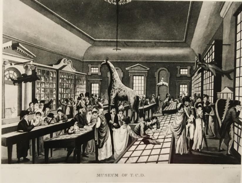museum_regent_house_1891