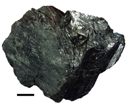 coal_small